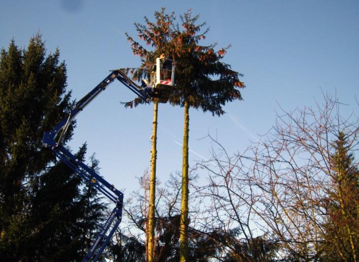 snoeiklus-19-meter-spinhoogwerker-23-5